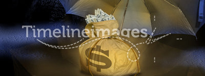Money bag under umbrella