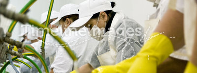 Workers in plant