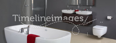 Modern Grey Bathroom
