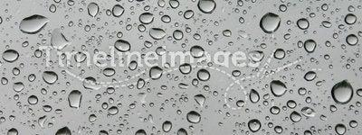 Water drops B&W