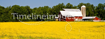 Country farm in springtime