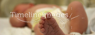 New born baby feet