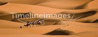Walk in the desert. Camel trekking on Africa´s desert, Merzouga dunes, Morocco