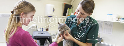 Young Girl Bringing Cat For Examination By Vet
