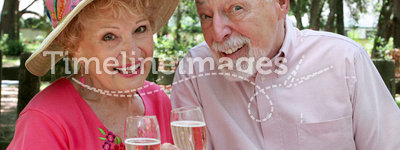 Happy Seniors Toasting